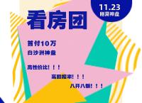 """【11.23看房团】白沙洲""""神盘"""",等你上车"""
